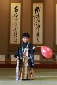 七五三詣り @ 魚吹八幡神社 | 姫路市 | 兵庫県 | 日本