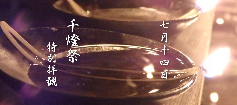千燈祭 7月14日 特別拝観
